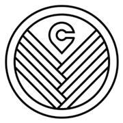 valleycat logo